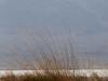 paysage_desert_mongole