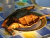 omoul-poisson-du-lac-baikal