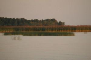 Golf de Finlande